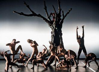 Tanzstück durch wahnsinnigen Bilder-Kosmos