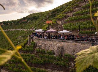 Genuss und Musik an der längsten Tafel im Neckartal