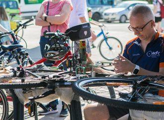 Ludwigsburg lädt zum Mobilitätstag