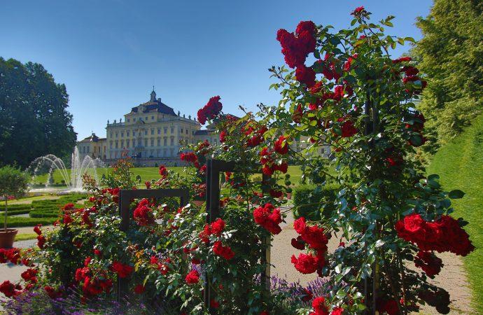 Lustwandeln in blühenden Gärten