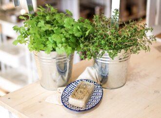 Grüner leben ohne Plastik